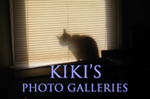 Kiki's Photo Galleries
