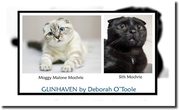 "Moggy Malone Mochrie and Sith Mochrie, two characters found in ""Glinhaven"" by Deborah O'Toole. Click on image to view larger size in a new window."